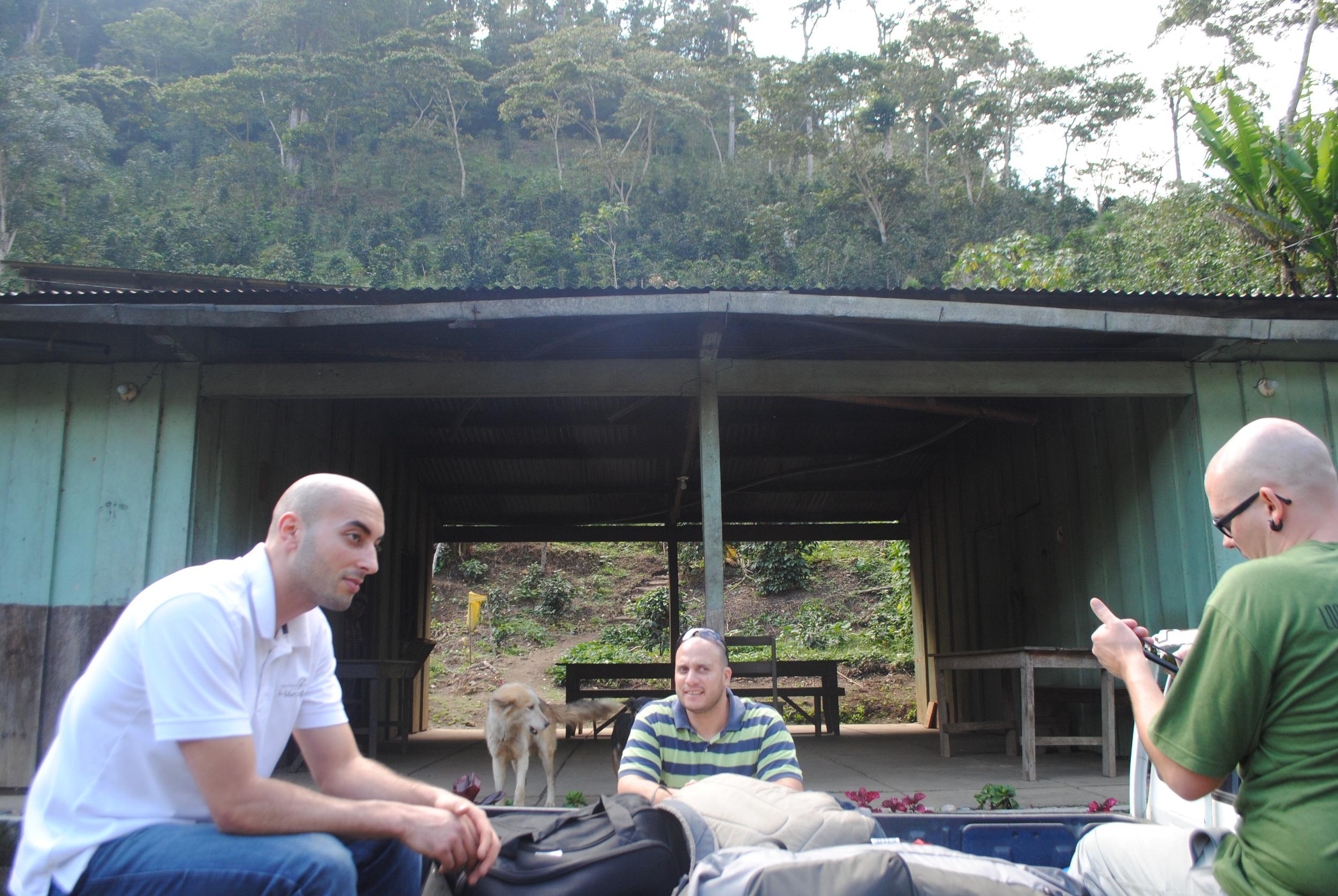 The Main Cabin