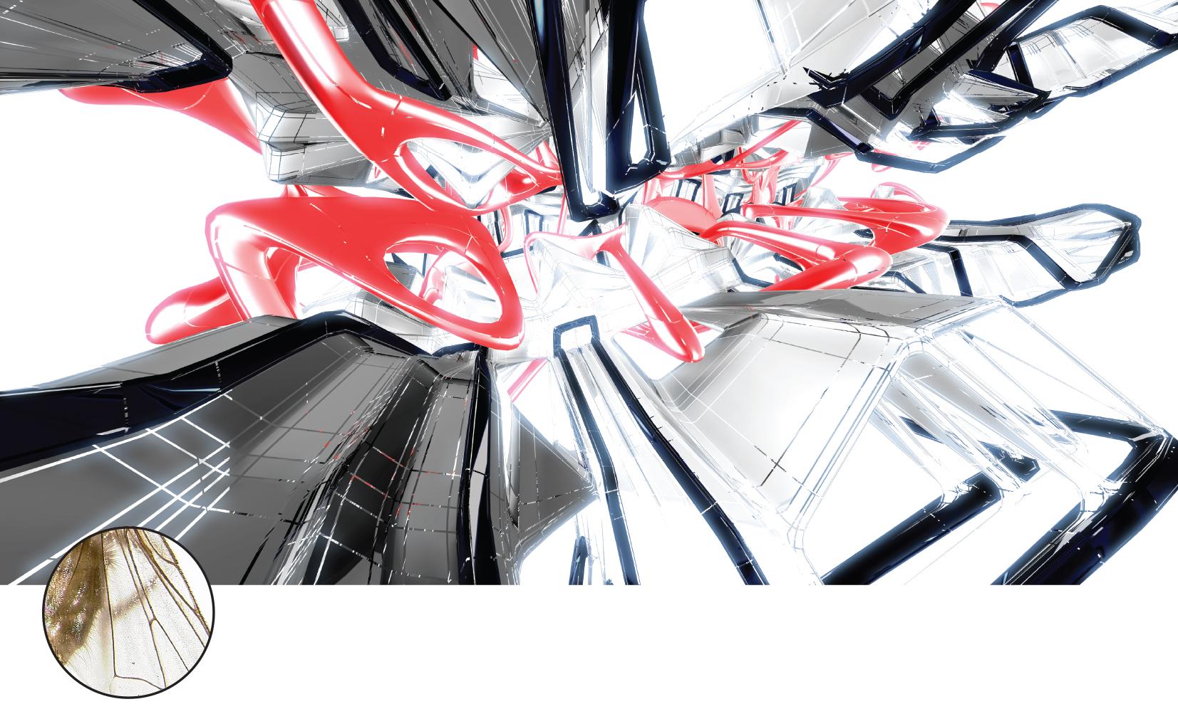 Flori_Kryethi_compiled-25 copy.jpg