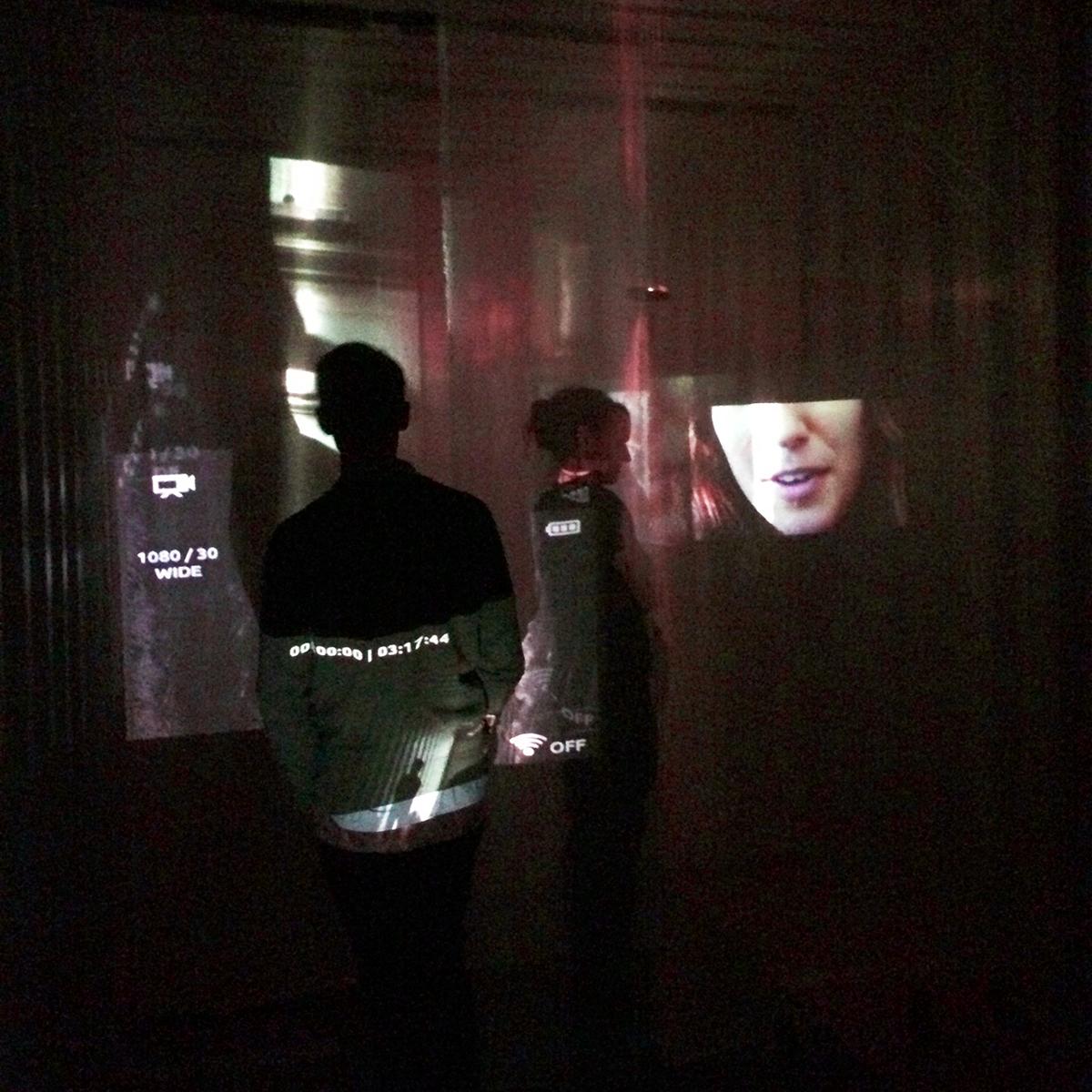 Francesi-Brooke_2014-Fall-CCA-Perceptual-Shifts_Installation-Photo-02.jpg