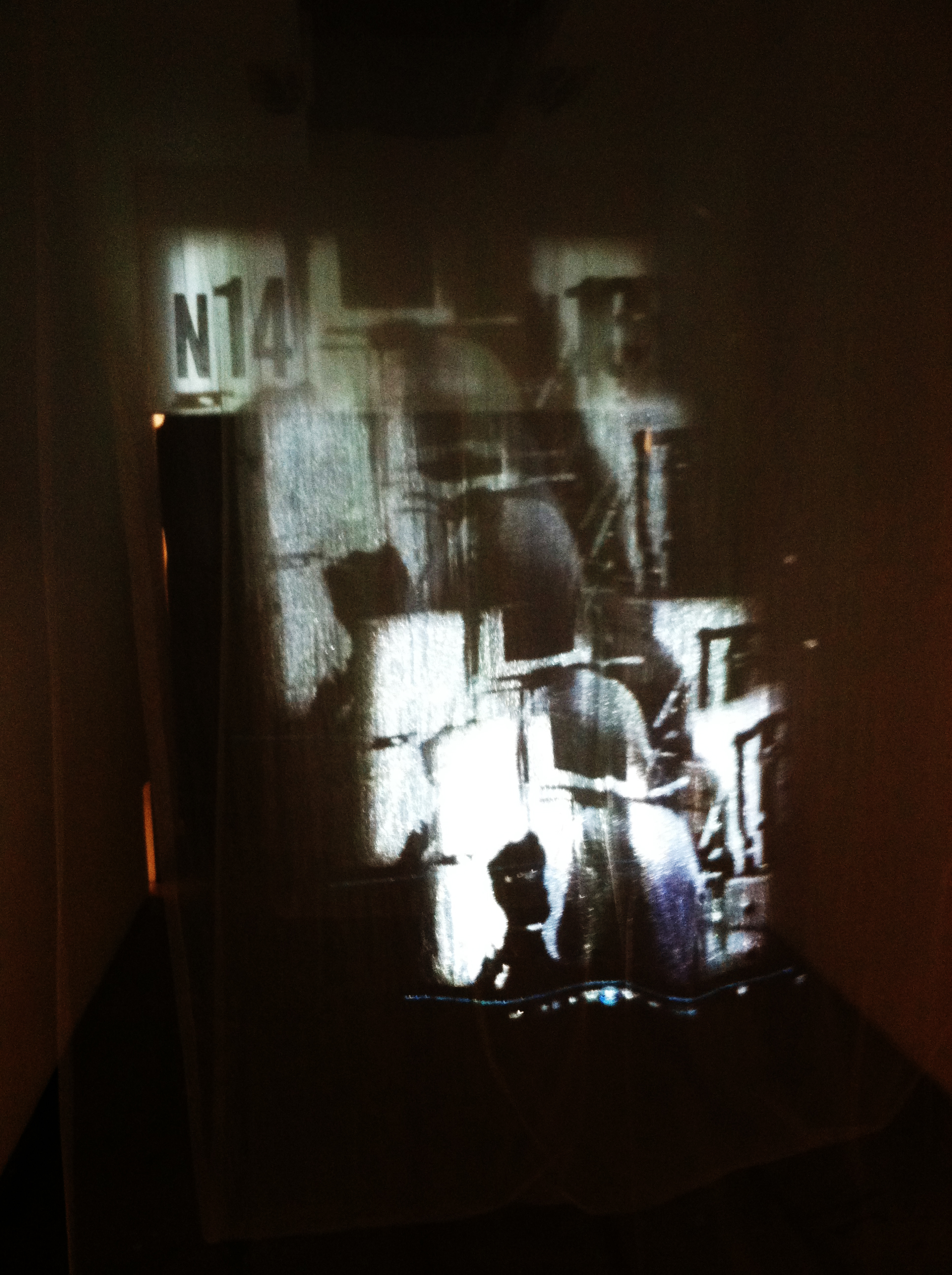Diaz-Jojit_2014-Fall-CCA-Perceptual-Shifts_Installation-Photo-01.JPG.JPG