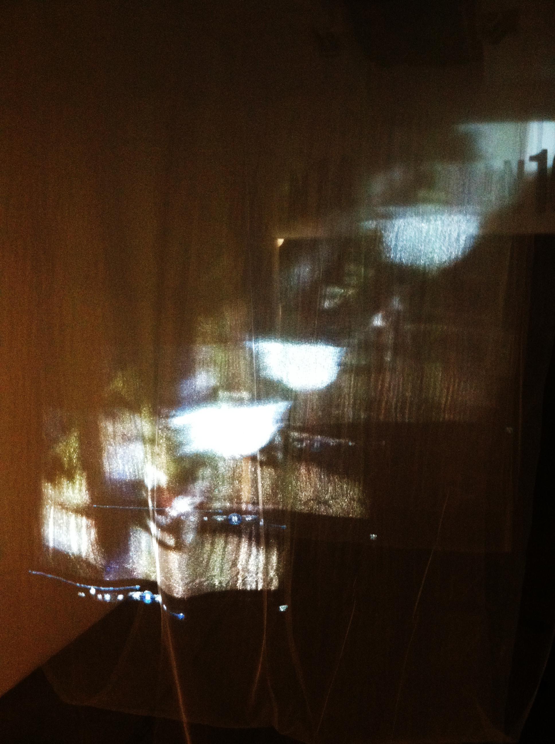 Diaz-Jojit_2014-Fall-CCA-Perceptual-Shifts_Installation-Photo-05.JPG.JPG
