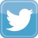 twitter_bird_logo.jpg