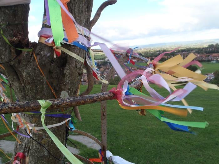 The Holy Thorn Tree overlooking Glastonbury, UK.