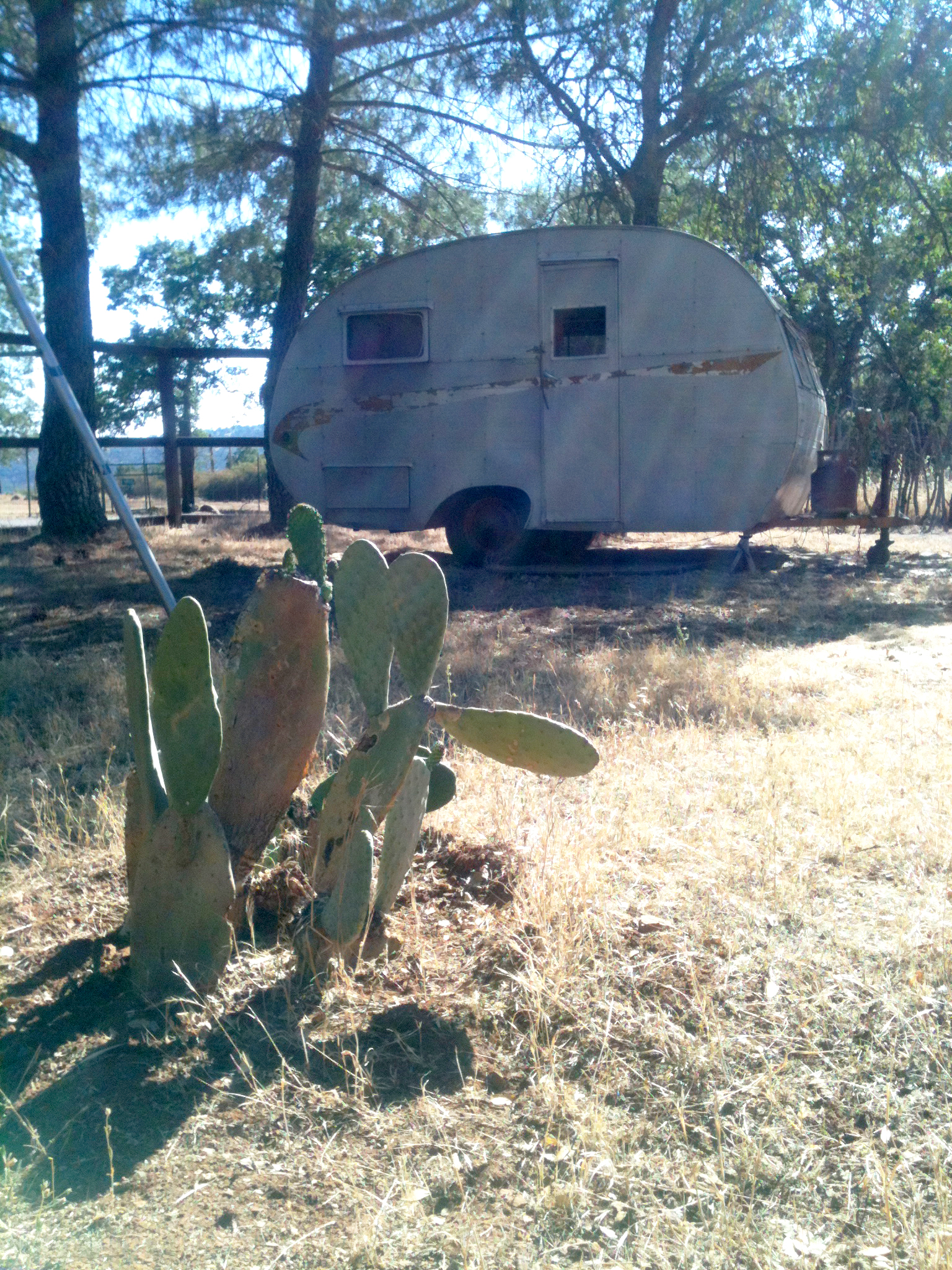 A vintage trailer on the ranch.