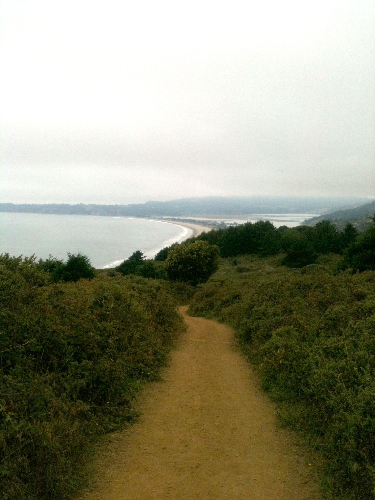 A foggy trail above Stinson Beach.