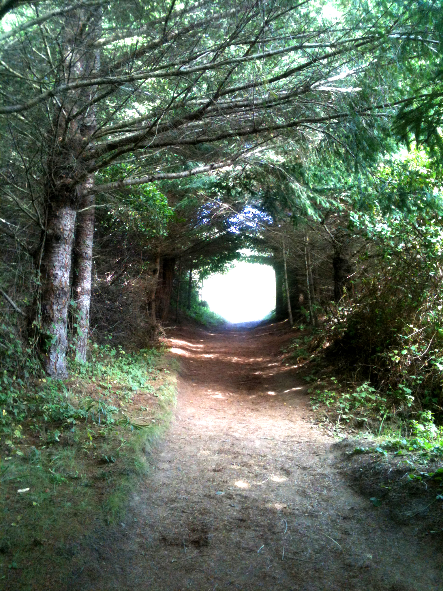 One of a few hallways on the hike.