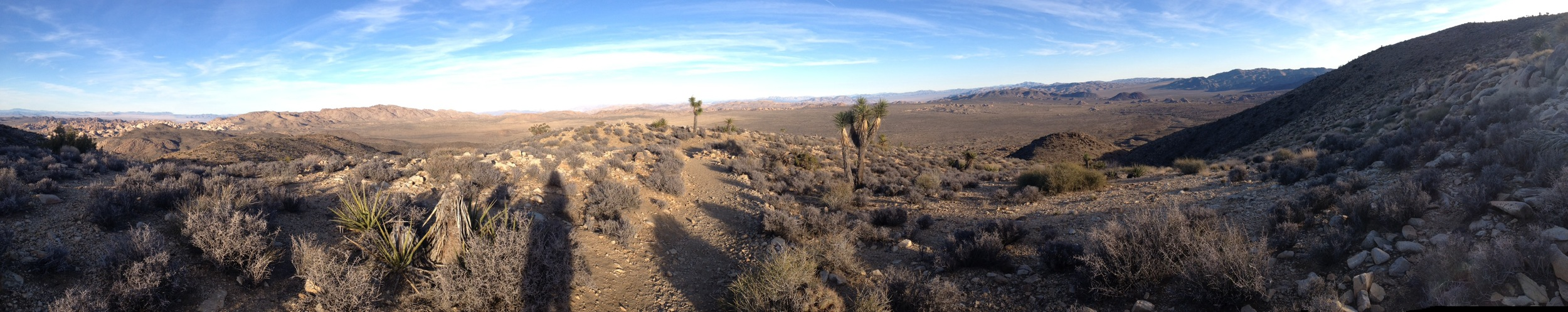 A panoramic view from Ryan Mountain