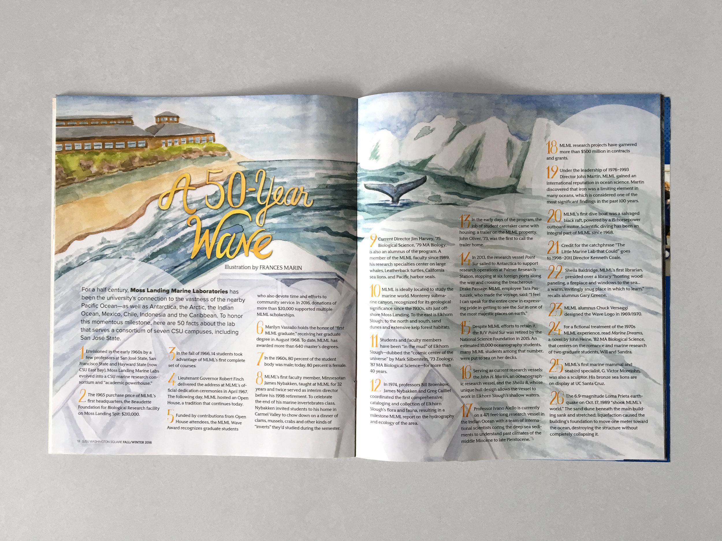A 50-Year Wave for Washington Square Magazine