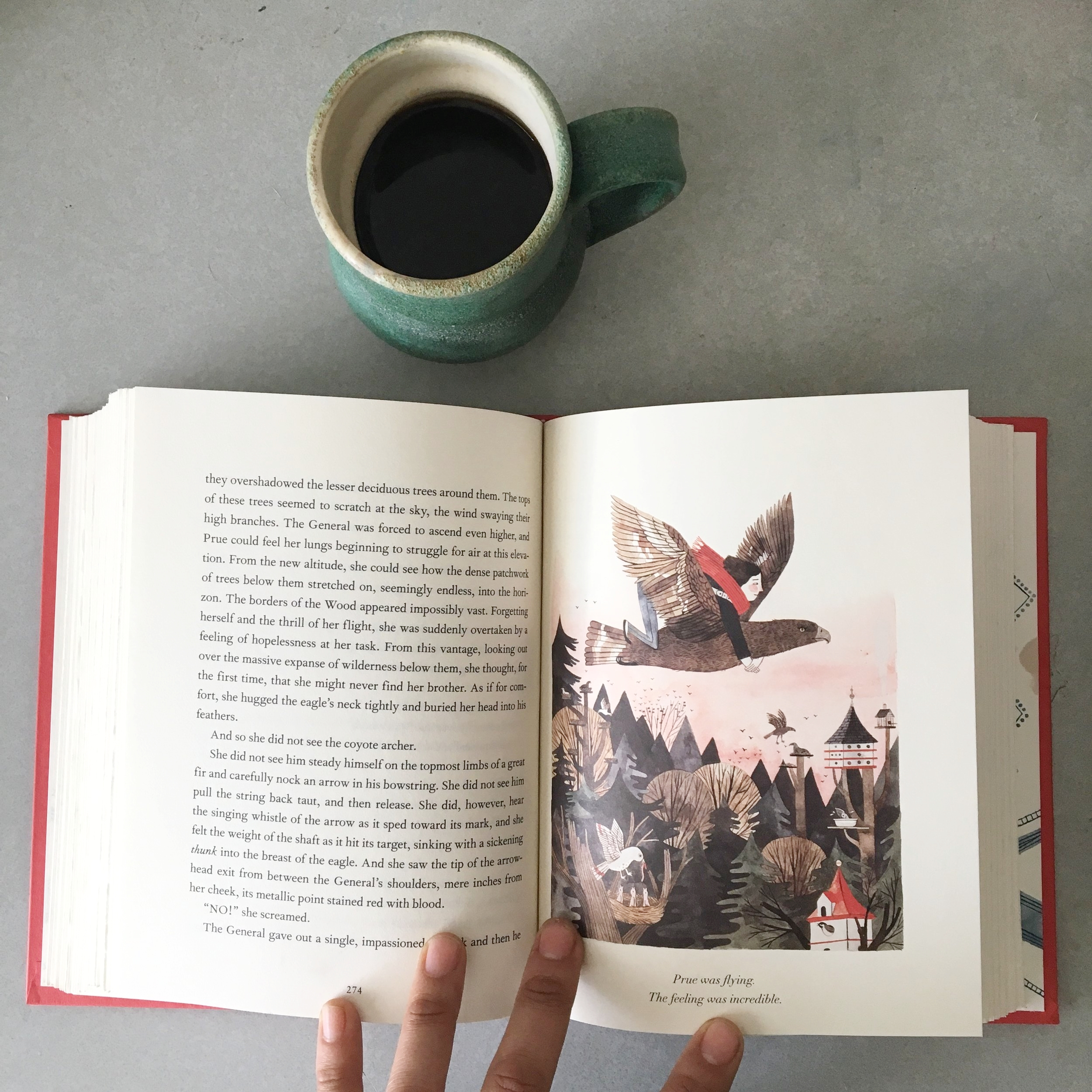 Wildwood  by Colin Meloy and illustrated by Carson Ellis