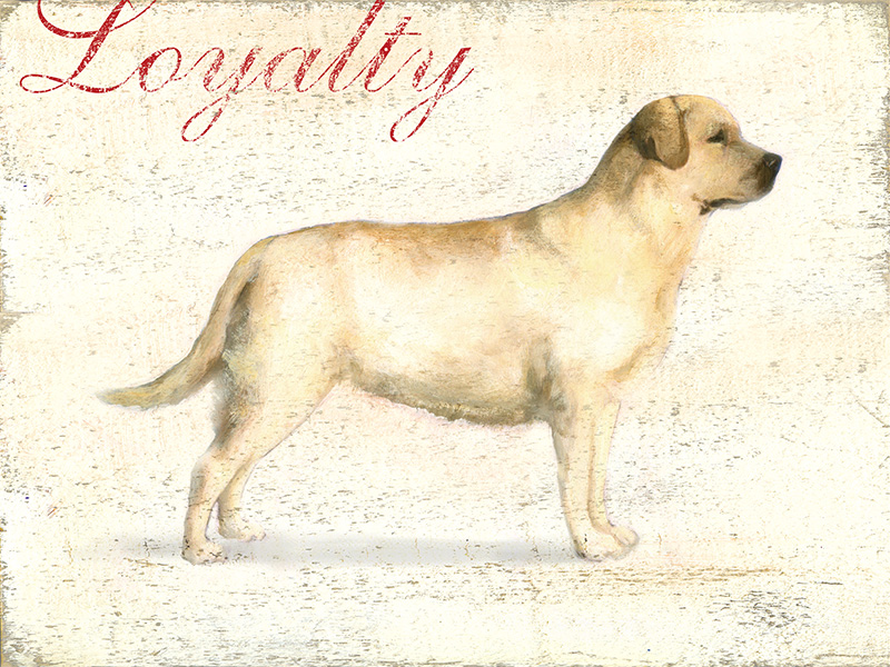 Loyalty Yellow.jpg