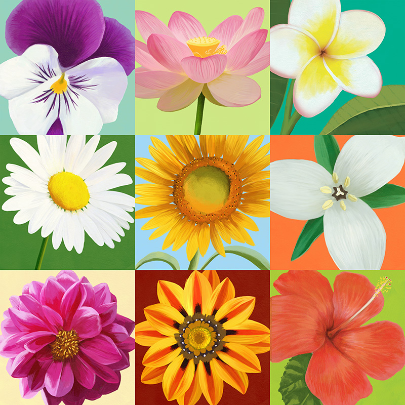 CSteffen-Florals-9up.jpg