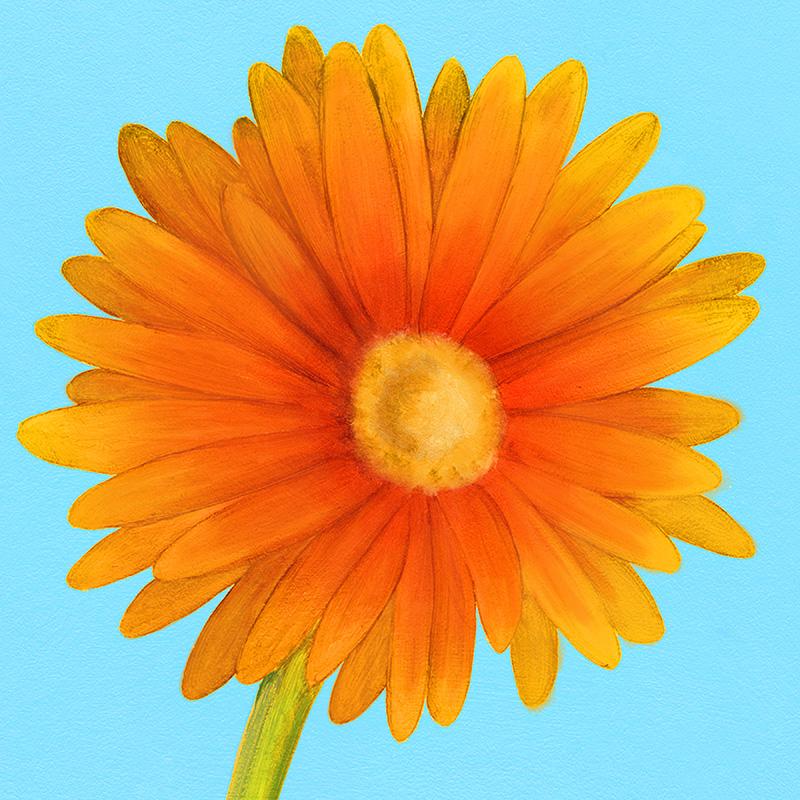 CSteffen-Flower-Art-01.jpg