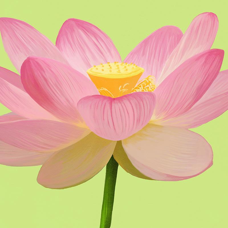 CSteffen-Flower-Art-03.jpg