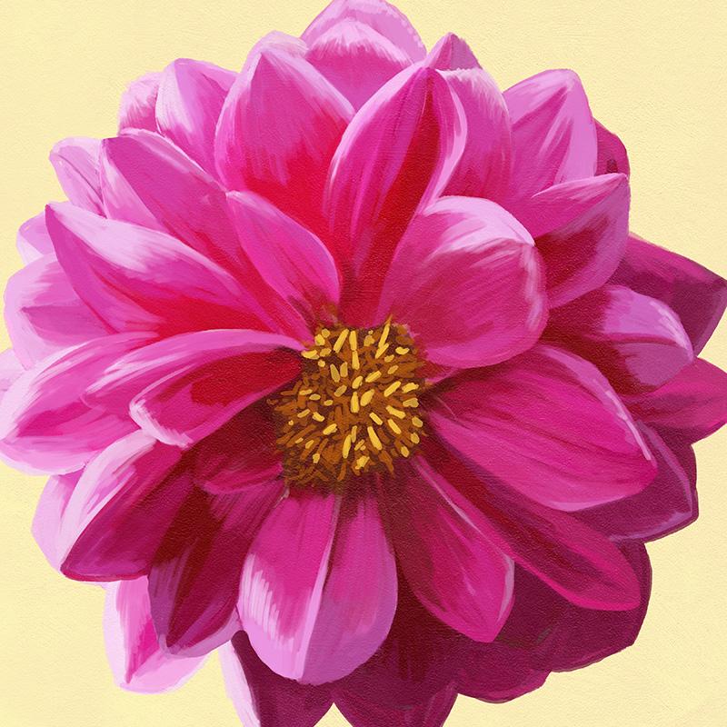 CSteffen-Flower-Art-04.jpg