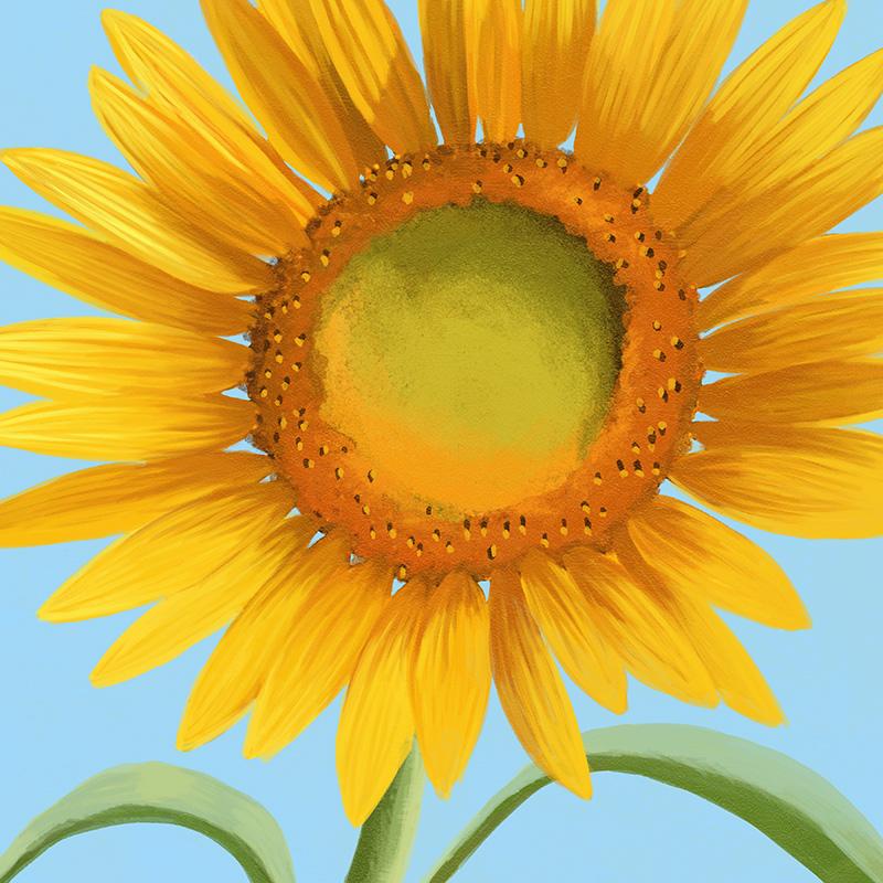 CSteffen-Flower-Art-06.jpg