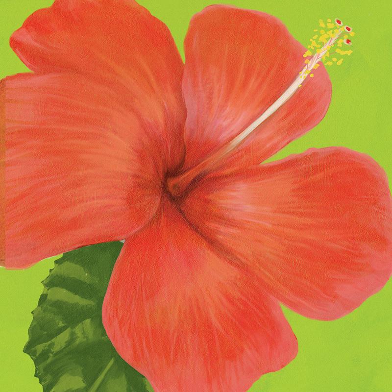 CSteffen-Flower-Art-09.jpg