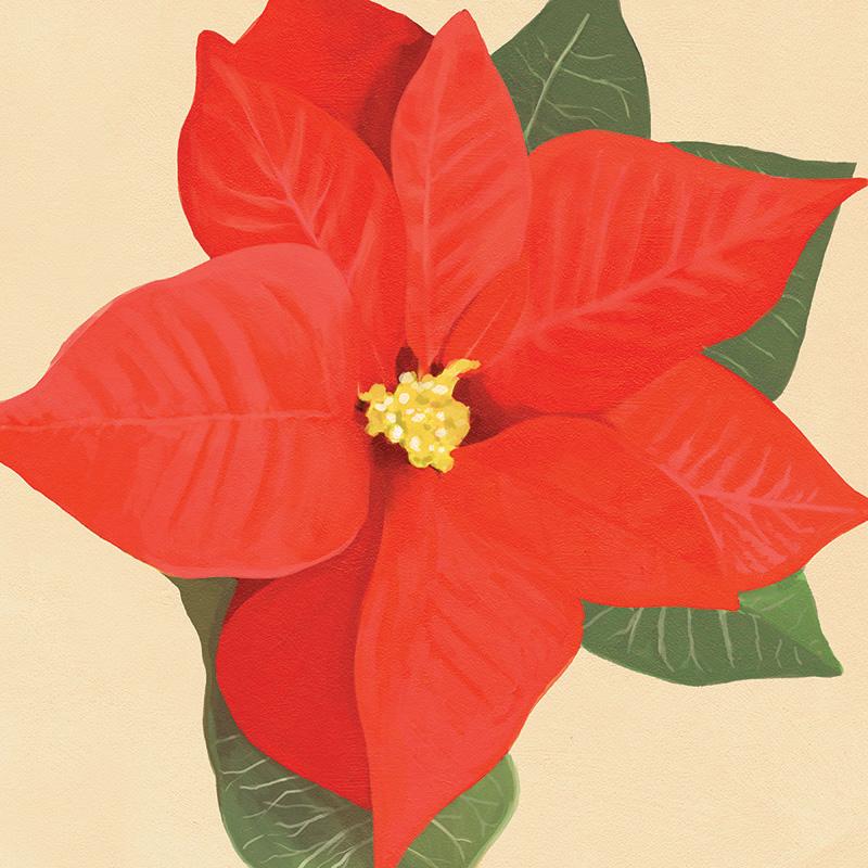 CSteffen-Flower-Art-12.jpg