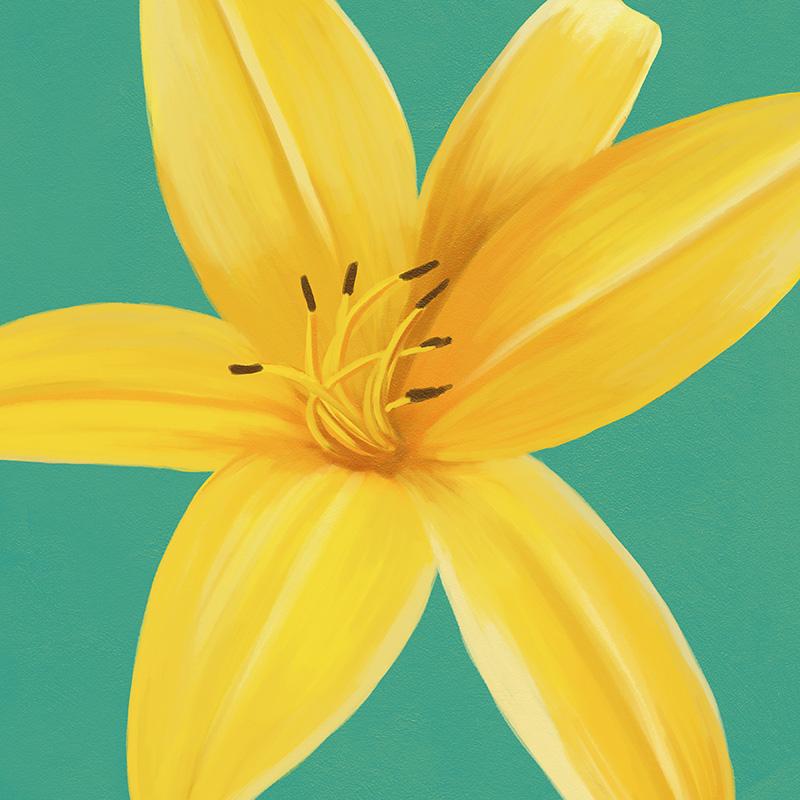 CSteffen-Flower-Art-13.jpg