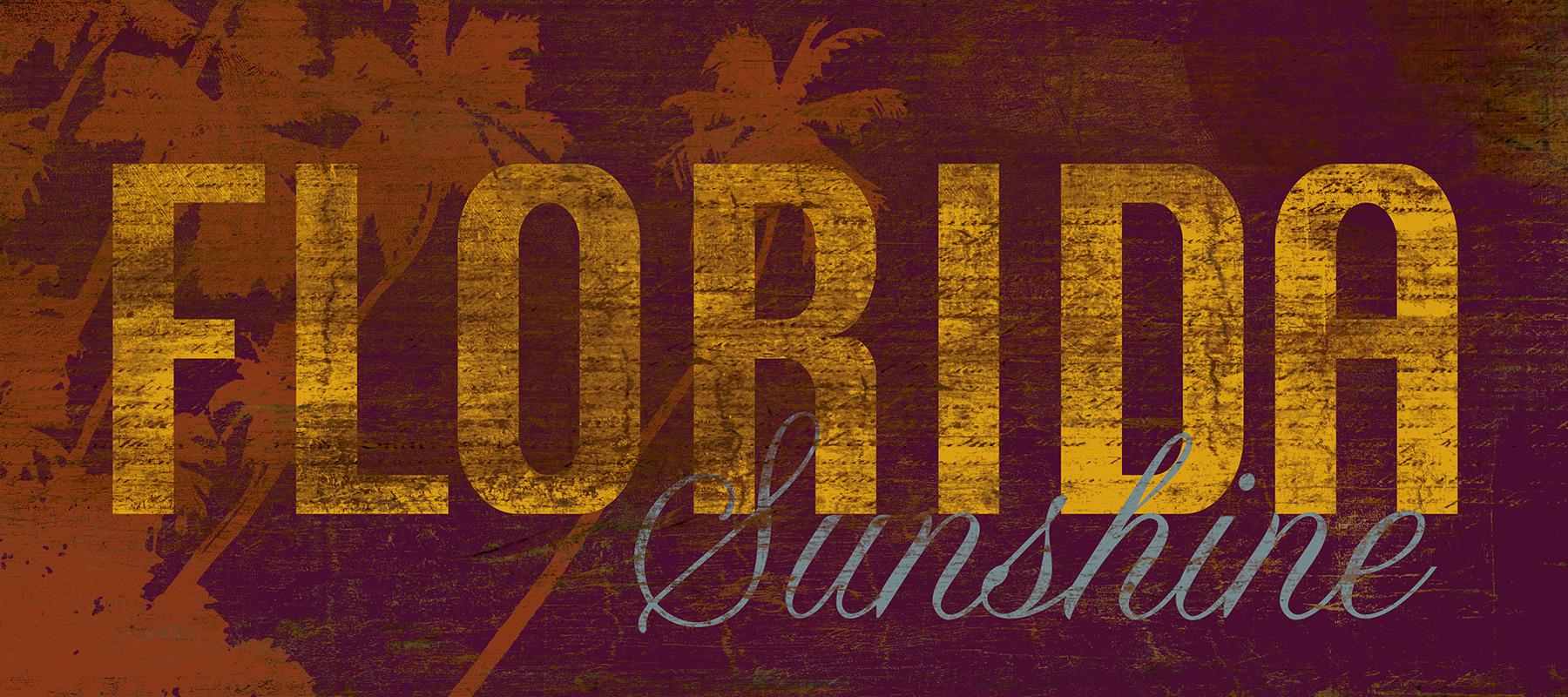 CSteffen_Florida Sunshine.jpg