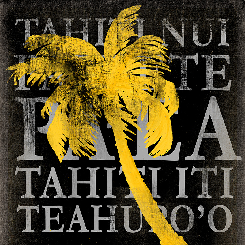 CSteffen_0402-4273_Tahiti Palm Black Sq.jpg