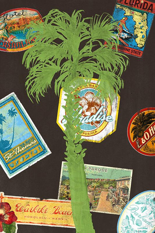 CSteffen_Travel Palm Green.jpg