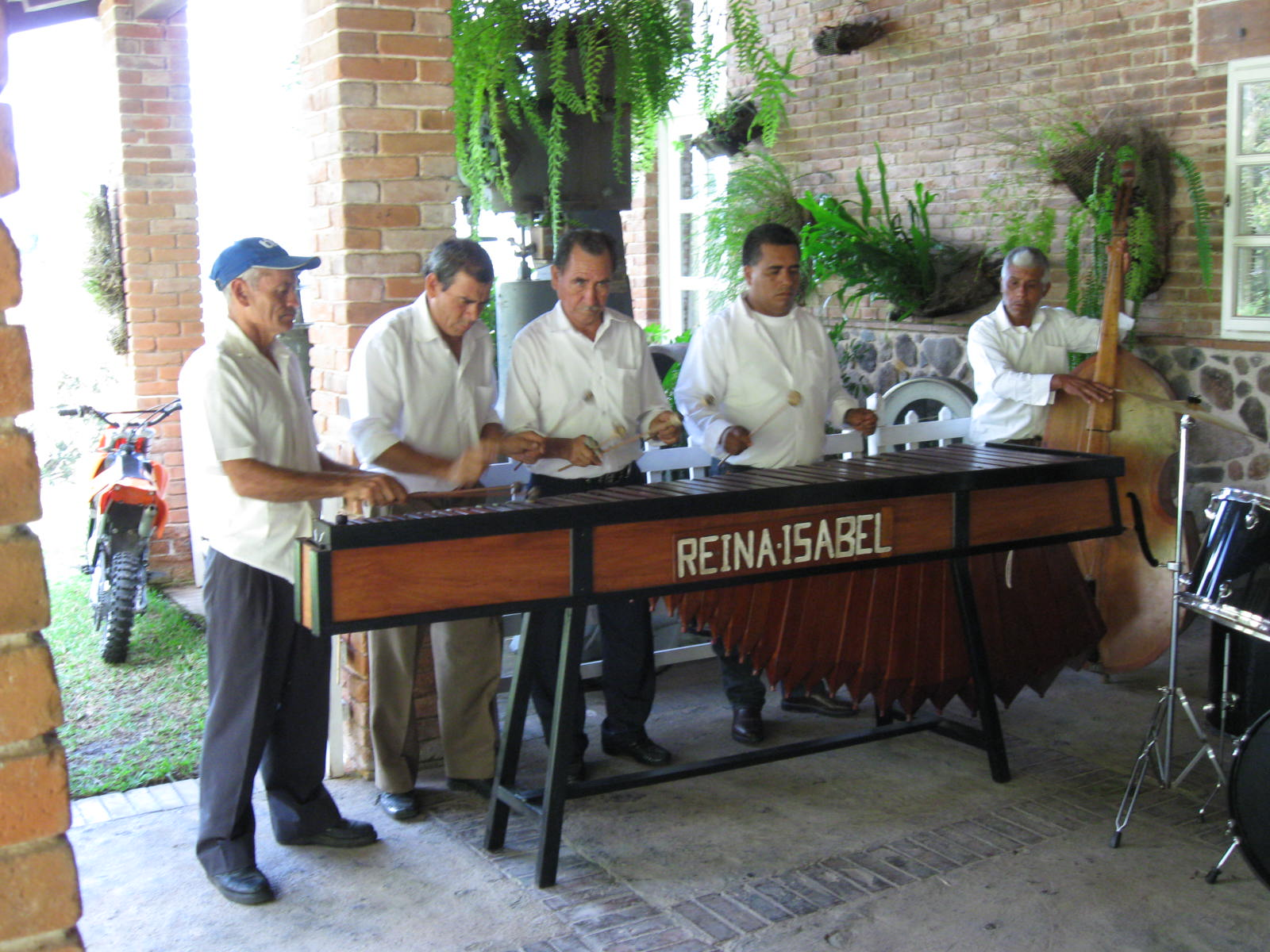 Merengue Band