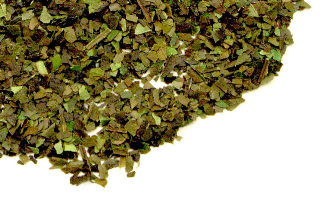 Guayusa Mint