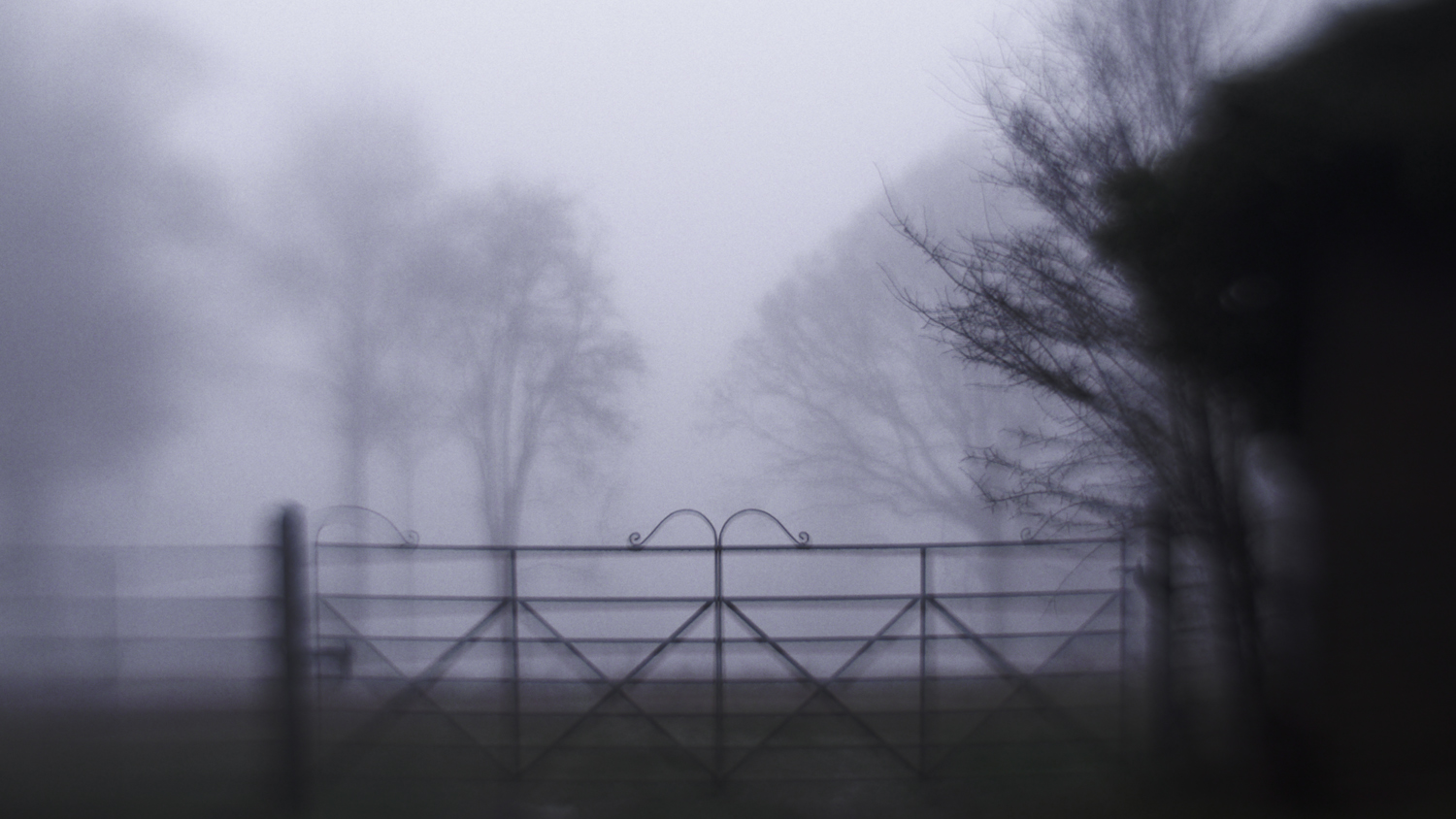 A Foggy Morning in my Home Town4.jpg