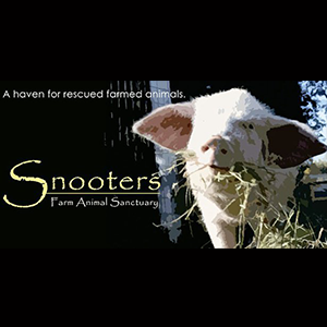 Snooters Farm Animal Sanctuary Charity Donation