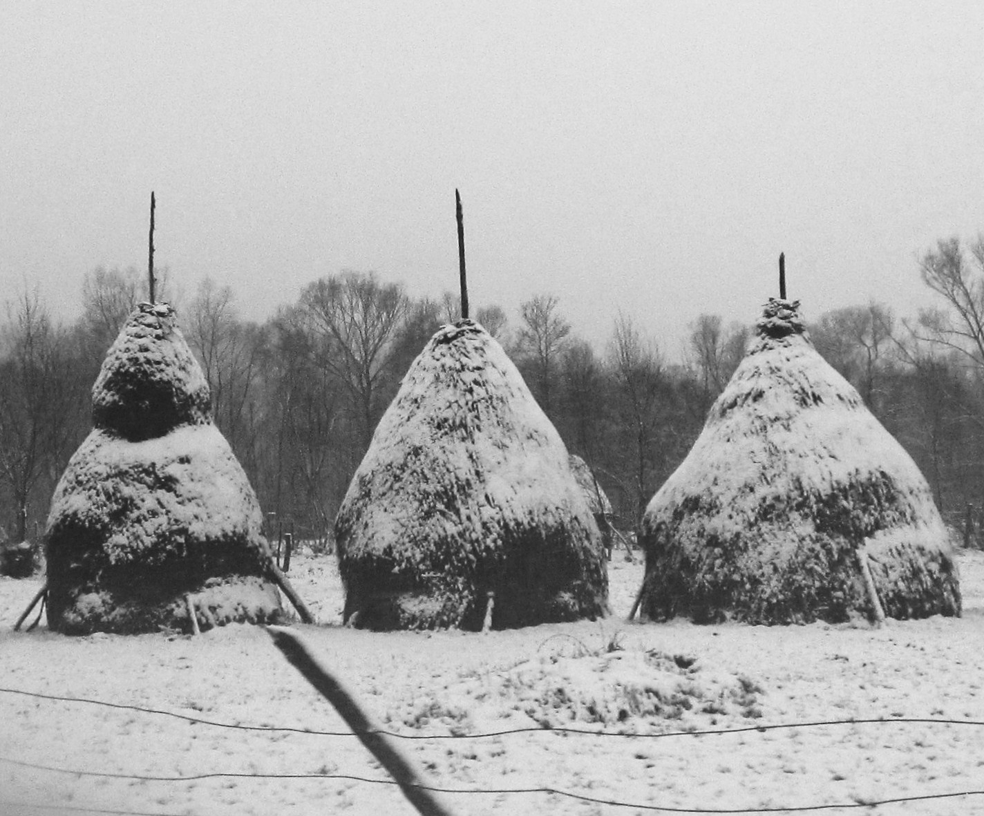 Haystacks in Romania