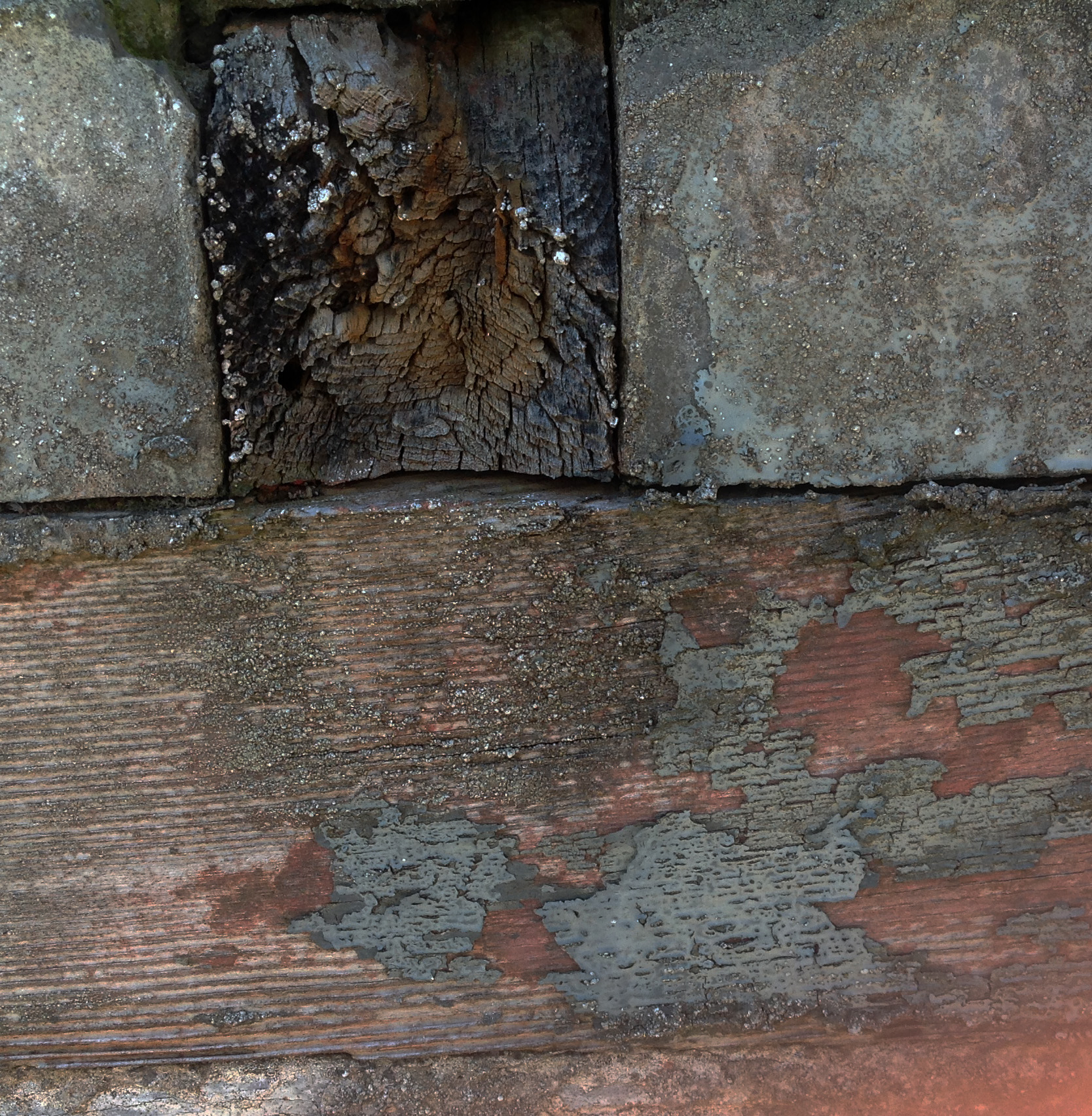 wood and wall.jpg