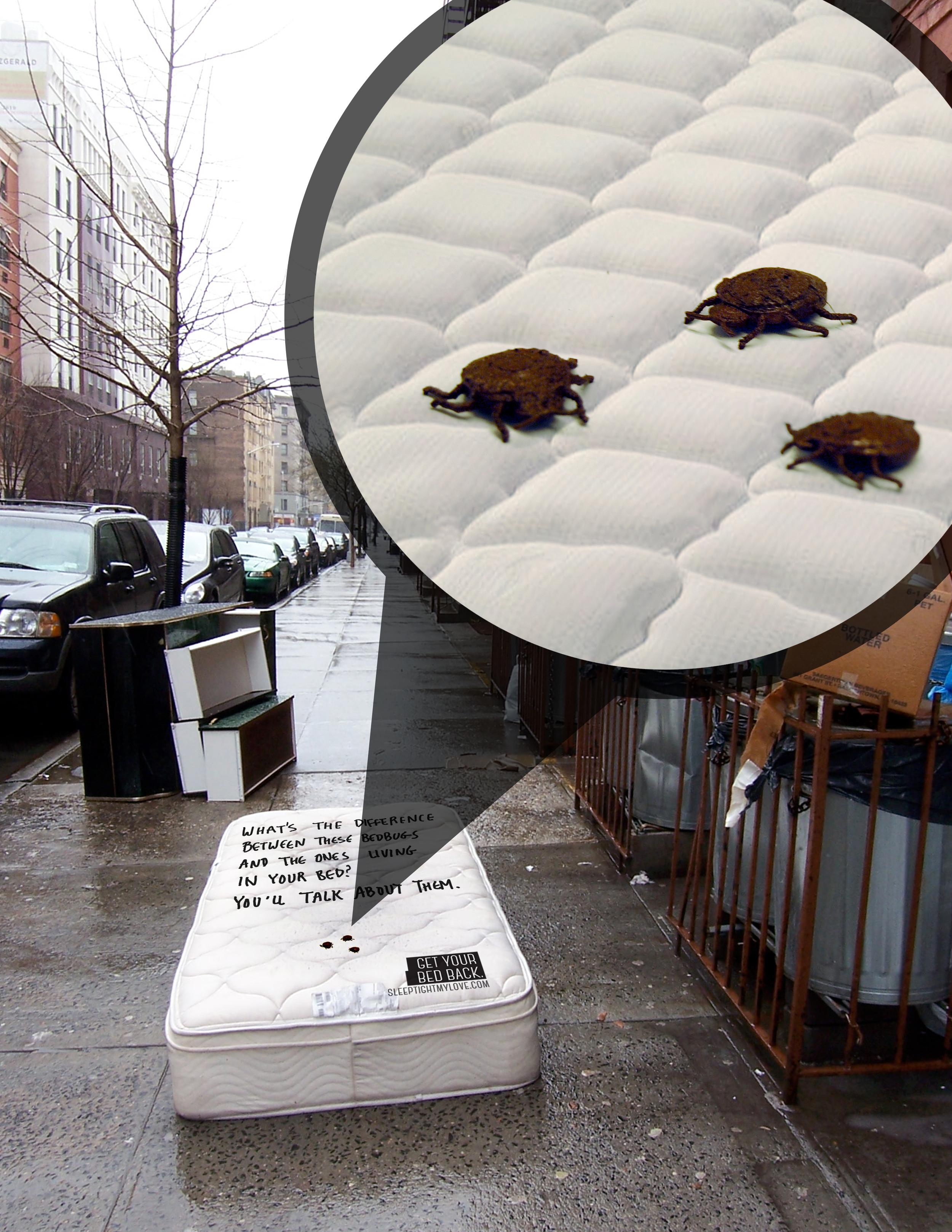 bed bug_mattress installation_2.jpg