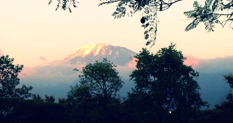 Moshi Kilimanjaro WHOA travel