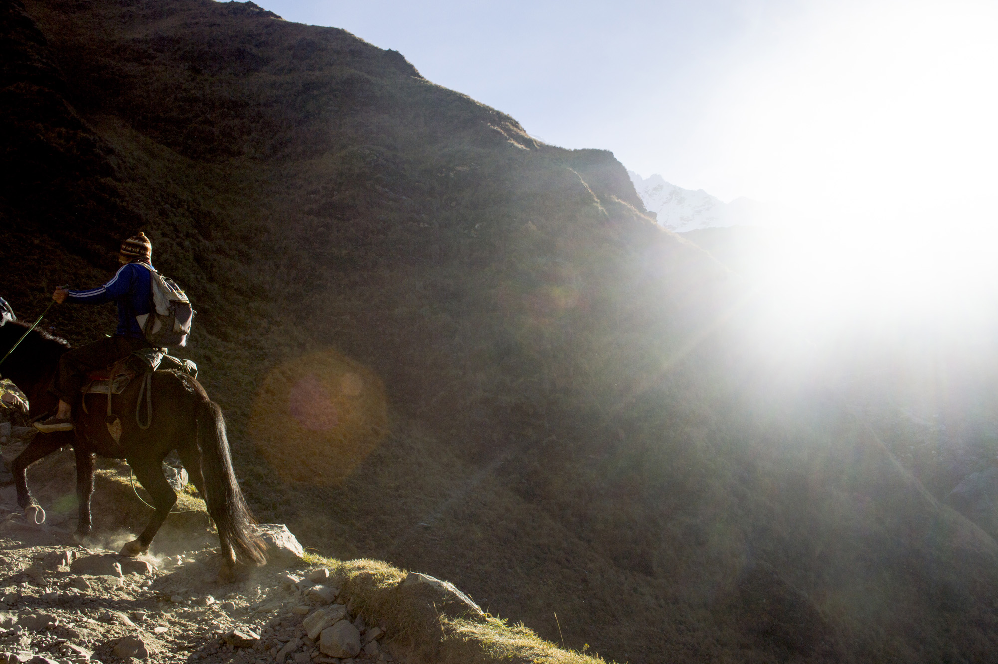 Inca 2 horse uphill sun.jpg
