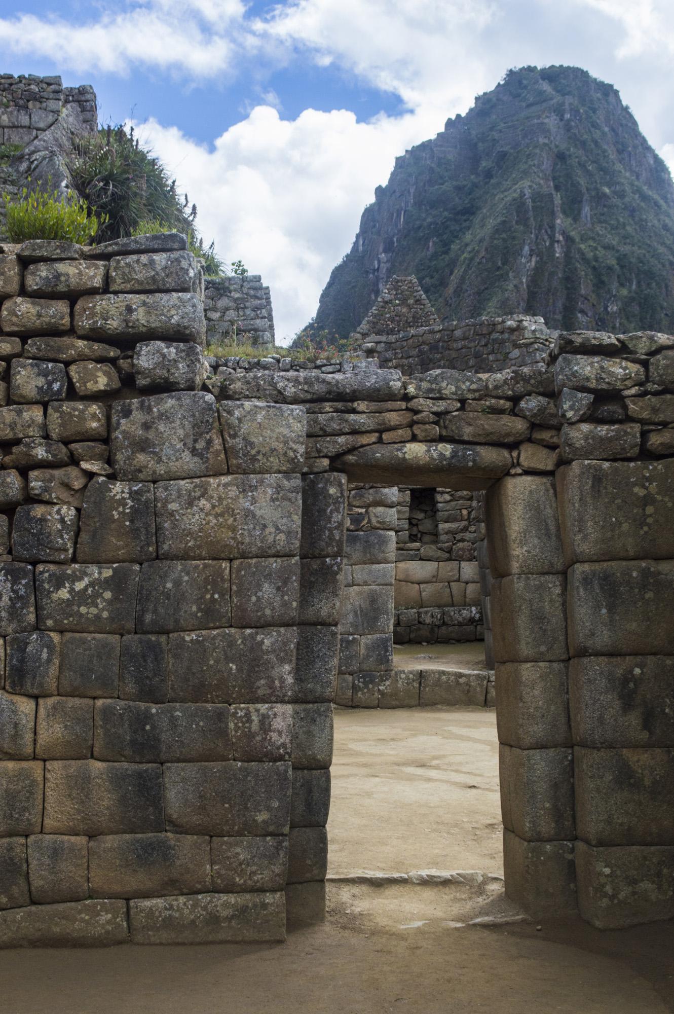 Inca 5 MP doors thru doors and WP.jpg