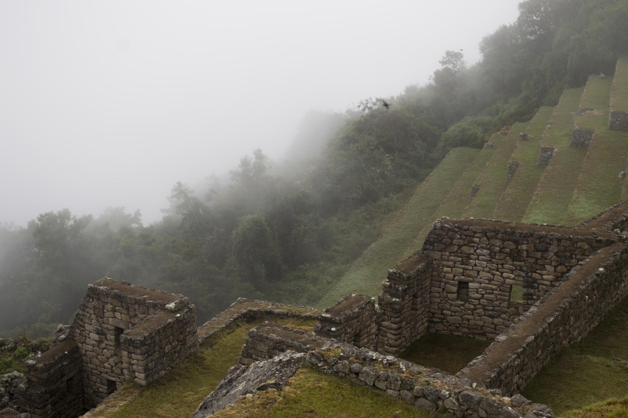 Inca 5 MP ruin fog.jpg