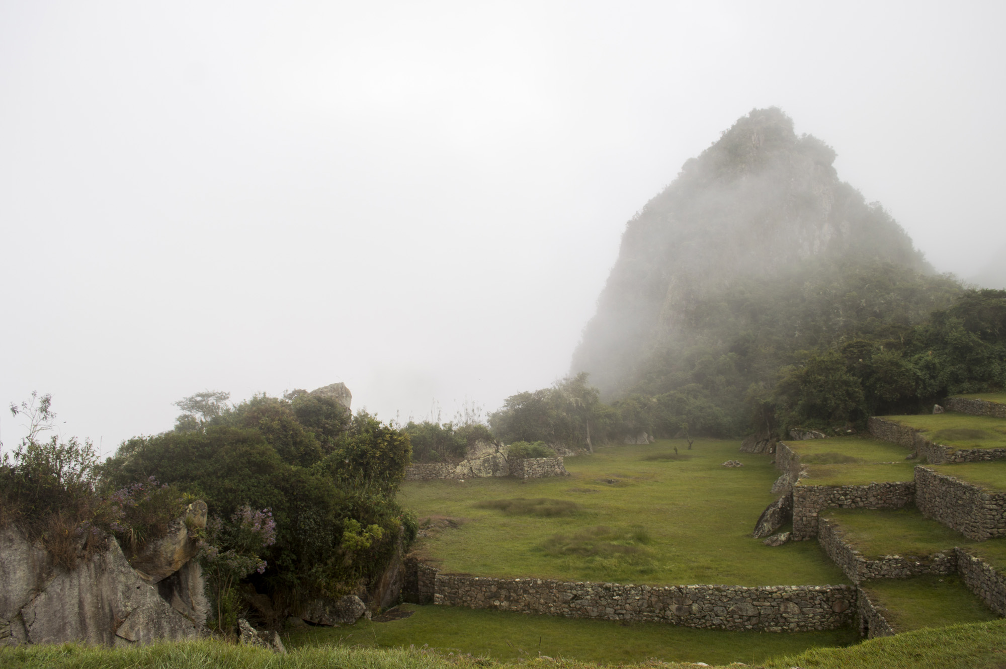 Inca 5 WP fog.jpg