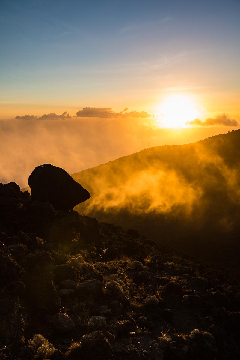 Kilimanjaro__0NB0034_Photo credit Nicola Bailey.jpg