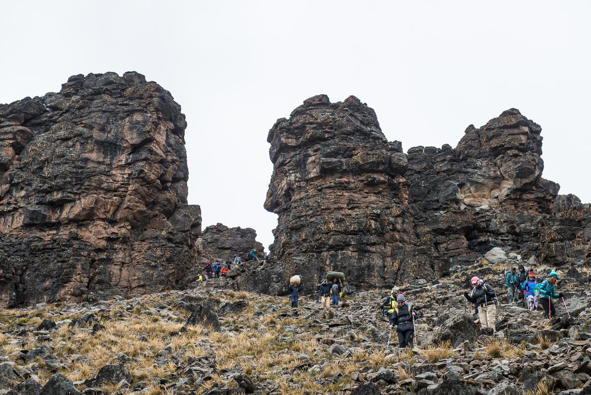 Kilimanjaro__0NB9655_Photo credit Nicola Bailey.jpg