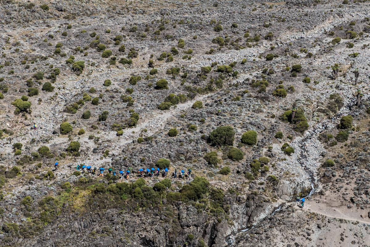 Kilimanjaro__0NB9843_Photo credit Nicola Bailey.jpg