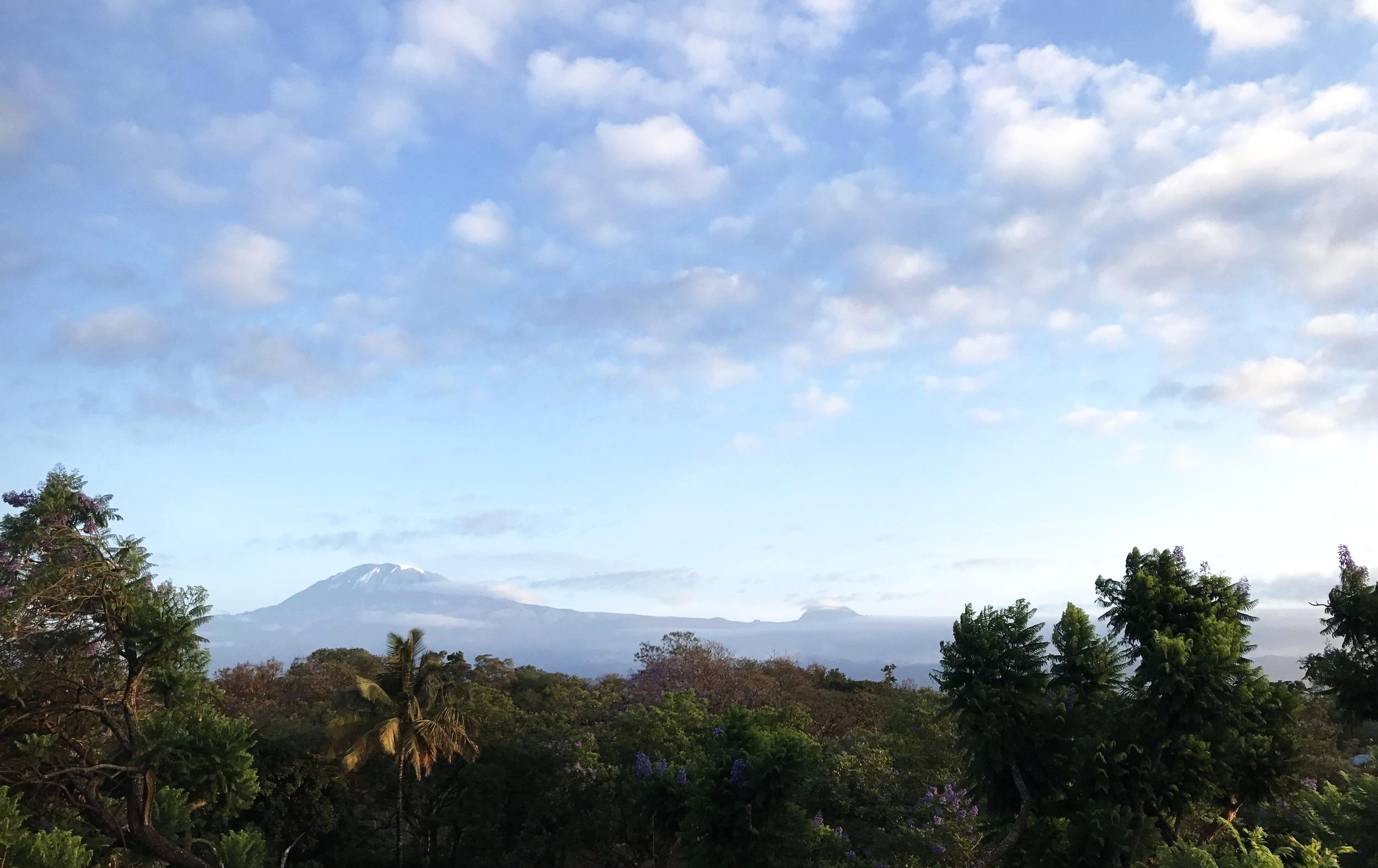 DAY 1:JAMBO KARIBU - MOSHI, TANZANIA