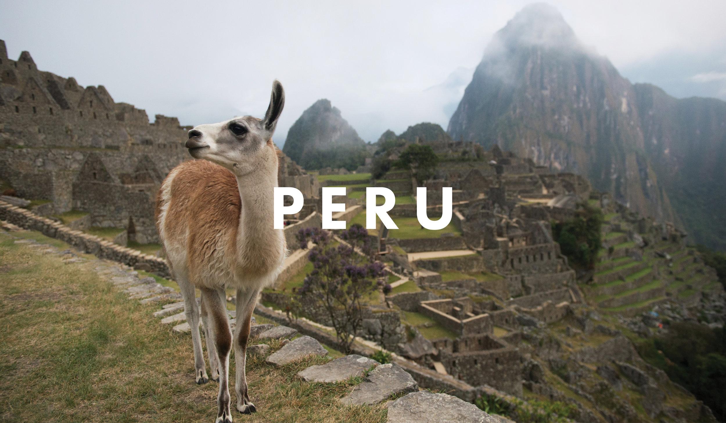 PERU with WHOA4.jpg