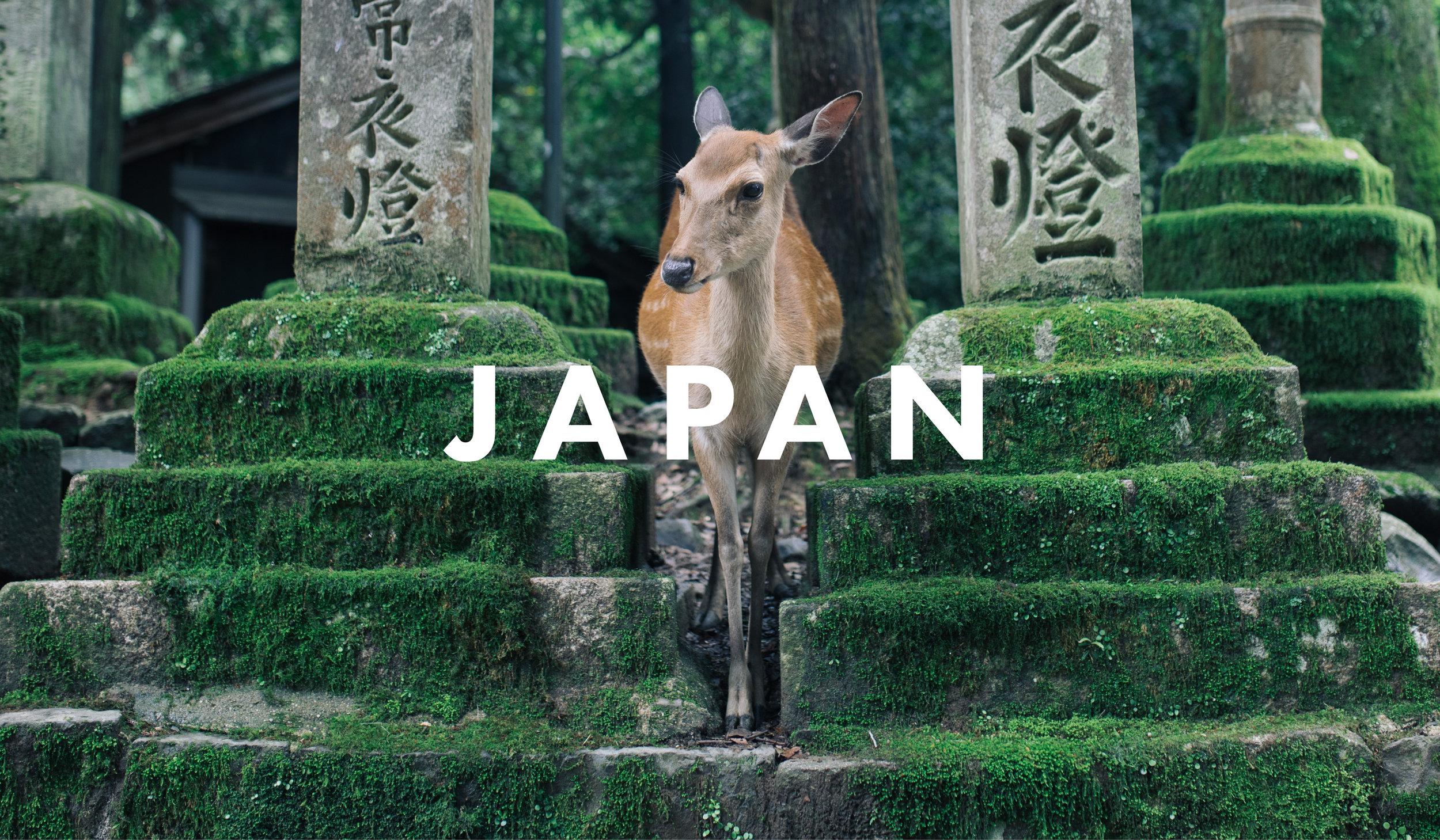 JAPAN COVER final4.jpg