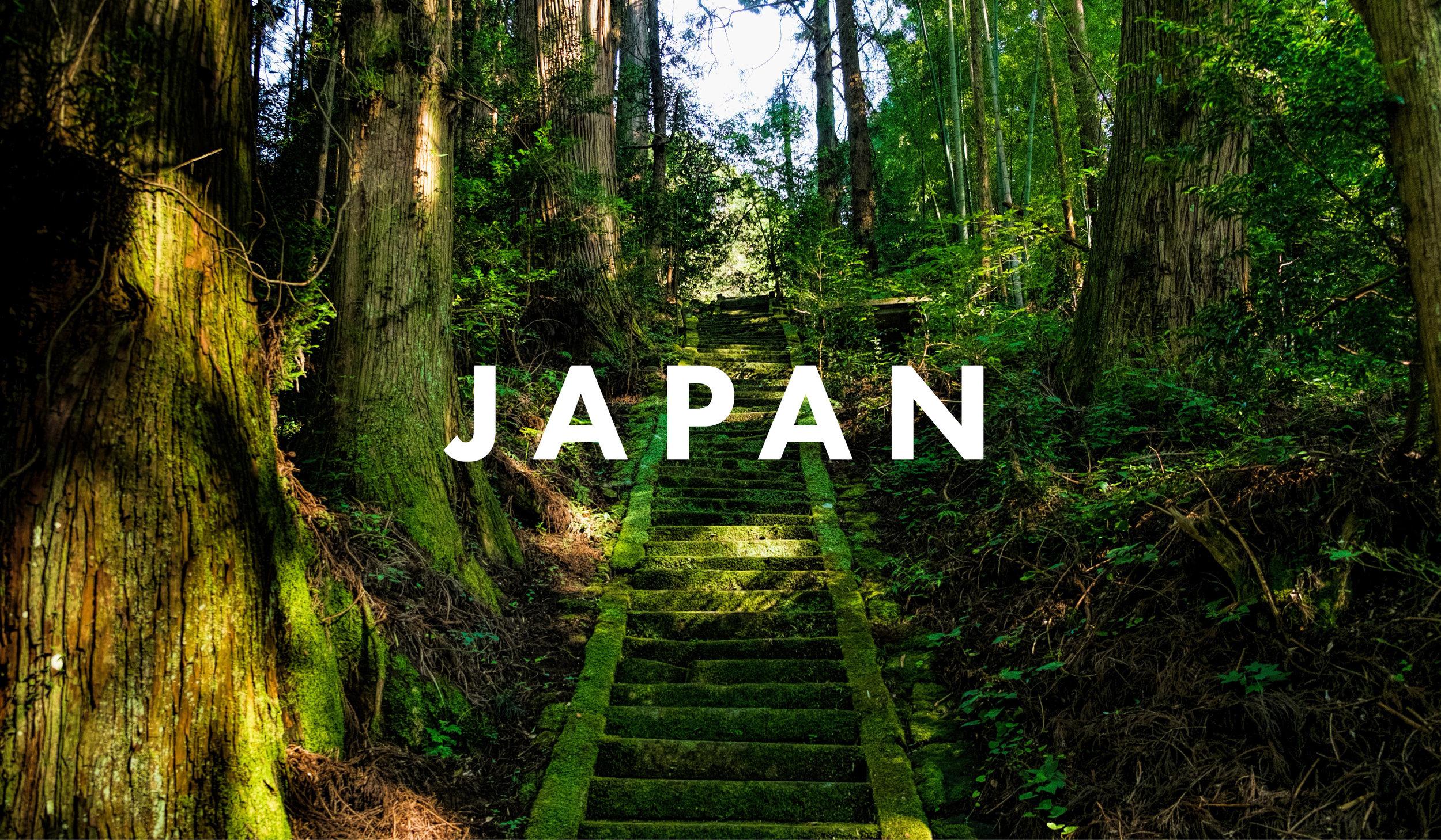 JAPAN COVER final8.jpg