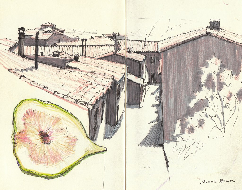 France, Rooftop and Fig