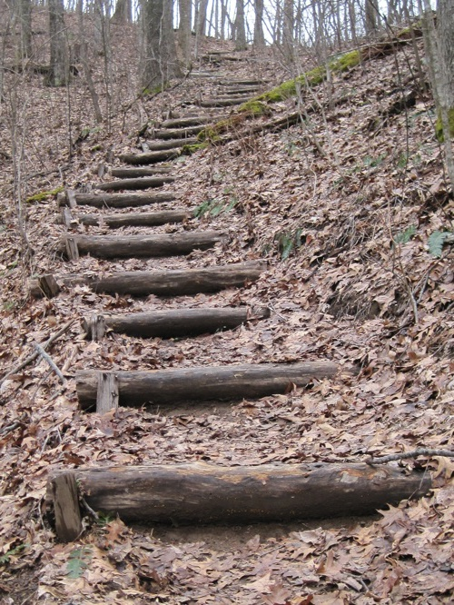 Timber check steps. Appalachian Trail.