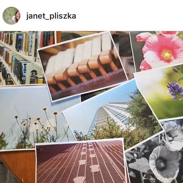 So proud of the inspired community and creativity that unfolded this week with @janet_pliszka at Kids Photo Camp. Check out her gorgeous feed and links for more info about her upcoming session!