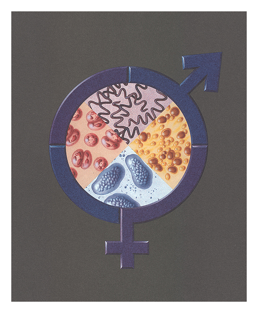 Abbott Laboratories Cover Art On Sexually Transmitted Diseases