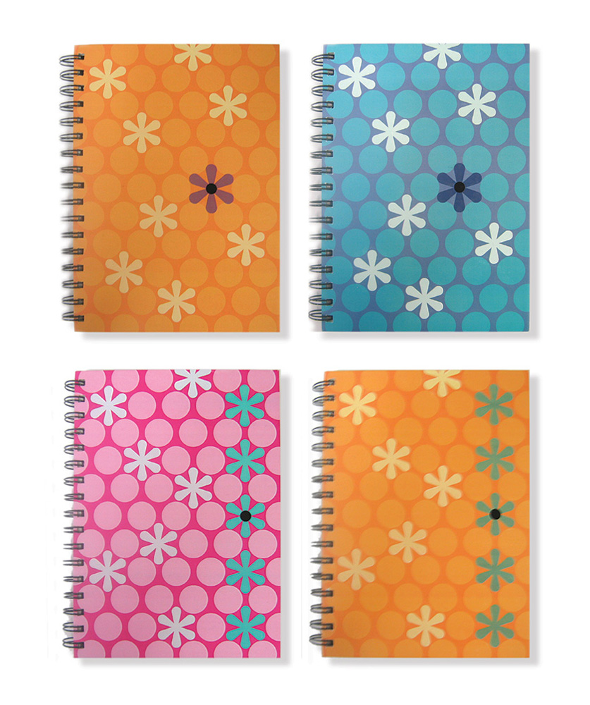 journal set for walgreens