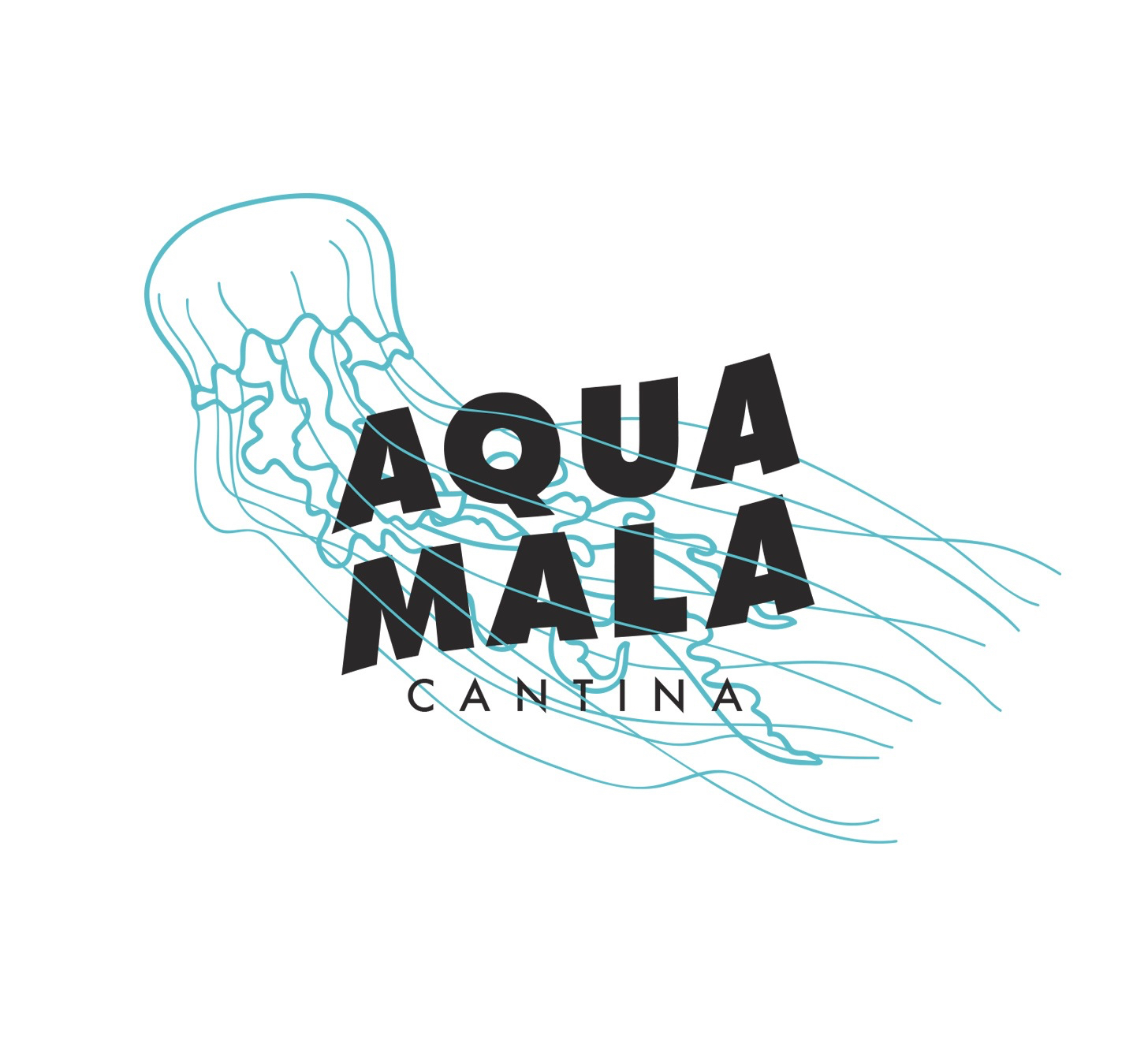 Logo for Cantina concept in Puerto Penasco, Mexico